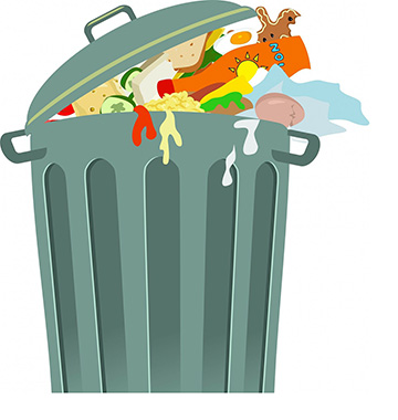 Reducing Food Waste on Campus | Innovative Ways Colleges and Universities are Minimizing Carbon Footprints