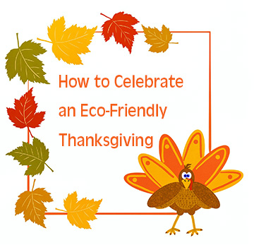 How to Celebrate an Eco-Friendly Thanksgiving 2019