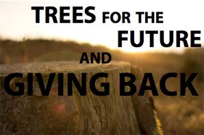 Trees for the Future and Giving Back