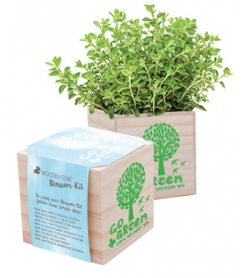 Earth Day Wooden Cube Planting Kit