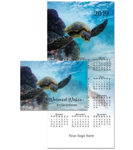 Eco Calendar Card Warmest Wishes - Turtle