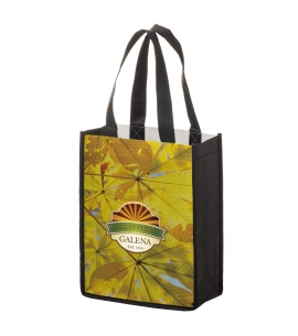 Full Color Non Woven PET Shopping Bag Eco Friendly Reusable Bag Eco Friendly Promotional Bag