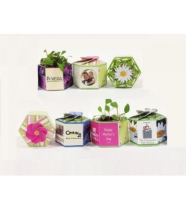 Earth Day Promotion Earth Day Giveaway Custom Planter Kit Eco Friendly Promo