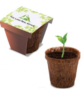 Plant Starter Kit | USA Made