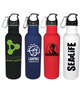 Single Wall Stainless Steel Water Bottle with Carabiner Soft Touch Promotional Water bottle