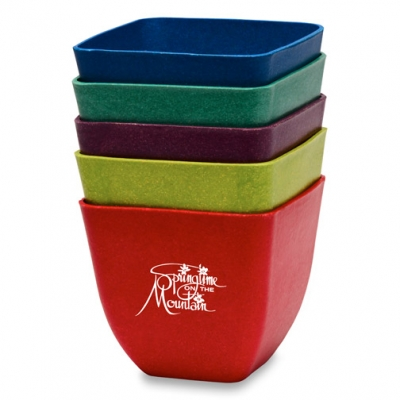 Bamboo Planter Earth Day Promotional Product Earth Day Giveaway