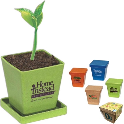 Bamboo Planter | Seed Kit | USA Made